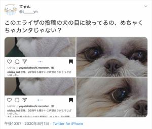 池田エライザとカンタの匂わせ
