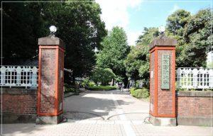 ハラミちゃんの大学はどこ?東京藝術大学ではなく桐朋学園音大