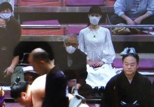 【溜席の妖精の正体】相撲にいつもいる女性