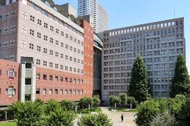 佐野勇斗の大学は明治学院の文学部