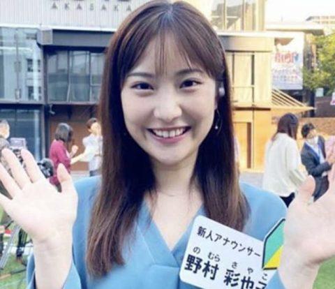 野村彩也子の母親は野村千恵子で元CA?顔画像や兄弟の職業など家族構成まとめ
